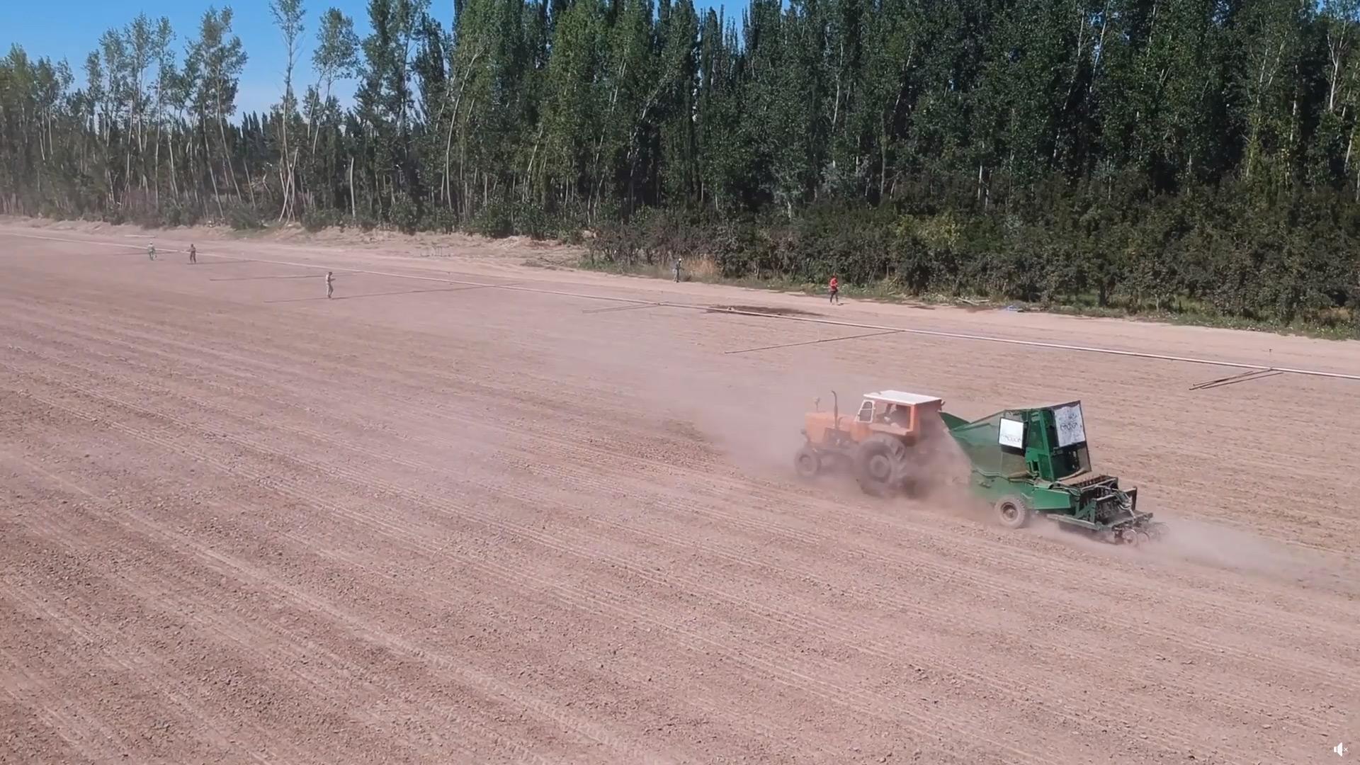 Método Row Planting en 5 hectáreas